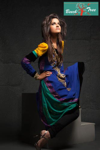 formal multi coloured dress with embroidery for women