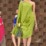 Sana-Safinaz-Latest-Collection-At-Lux-Style-Award-2011-4 style.pk