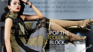 Saim Ali Luxury Pret Collection for Women 2011-12 style.pk 001