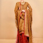 bridal dresses 2012 in Pakistan and india (17)