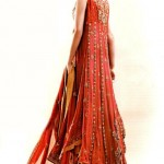 bridal dresses 2012 in Pakistan and india (13)