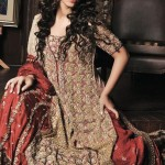 bridal dresses 2012 in Pakistan and india (3)