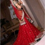 bridal dresses 2012 in Pakistan and india (1)