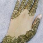 Latest Fashion Mehndi Designs For Women 2012 5
