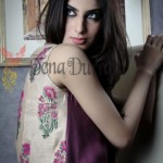 Tena Durrani Latest Formal & Semi Formal Dresses 2012 13