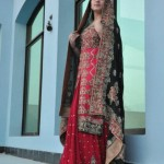 Crystallia Latest Wedding Wear Collection For Women 2012-003