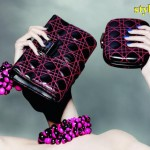 Dior Latest And Stylish Fashion Accessories For Women 2012-002