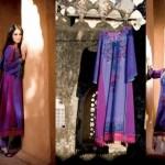 Five Star Textiles Swiss Voile & Zari Net Collection 2012 4