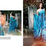 Five Star Textiles Swiss Voile & Zari Net Collection 2012 8