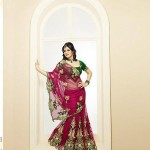 Latest Fashion Indian Saree Collection 2012 For Girls 9