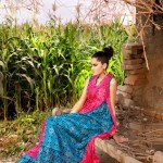 Latest G-Women Summer Collection 2012 by Gul Ahmed 5