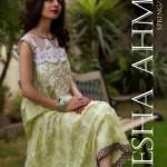 Ayesha Ahmed Casual Wear Lawn For Summer 2012-007