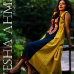 Ayesha Ahmed Casual Wear Lawn For Summer 2012-009