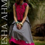 Ayesha Ahmed Latest summer Lawn Collection 2012-005