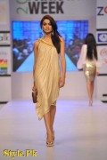 Shehla Chatoor Dresses At Fashion Pakistan Week 2012, Day 2-002