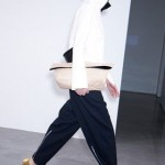 Celine Fashion Collection 2012-12 for women 3