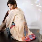 Threads And Motifs Latest Summer Collection For Parties 2012 003