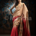 Eid-ul-Fitre 2012 Designer Saree Collection by Mansha001