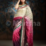 Eid-ul-Fitre 2012 Designer Saree Collection by Mansha003