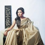Eid-ul-Fitre 2012 Designer Saree Collection by Mansha006