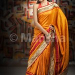 Eid-ul-Fitre 2012 Designer Saree Collection by Mansha008