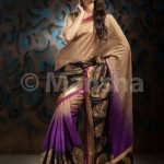 Eid-ul-Fitre 2012 Designer Saree Collection by Mansha009