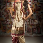 Eid-ul-Fitre 2012 Designer Saree Collection by Mansha010