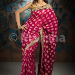 Eid-ul-Fitre 2012 Designer Saree Collection by Mansha012