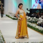 Fashion Model Neha Ahmed Pictures 009