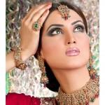Top model fiza Ali Profile 0013