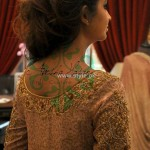 Ayesha Hasan Fall Collection 2012 for Women and Girls 014