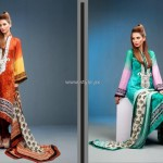 Feminine Embroidered Collection 2012 by Shariq Textiles 005