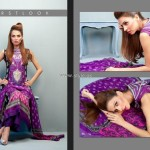 Feminine Embroidered Collection 2012 by Shariq Textiles 006