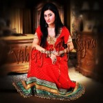 Vibgyor by Syra Party Wear Dresses 2012 for Women 009