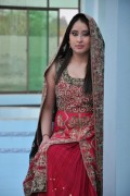 Crystallia Wedding Wear Collection 2012 For Women 002