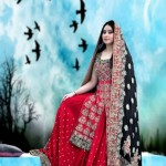 Crystallia Wedding Wear Collection 2012 For Women 003