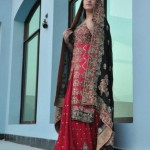 Crystallia Wedding Wear Collection 2012 For Women 007