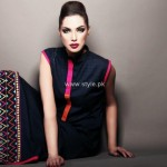 Cynosure Fall Collection 2012 Dresses for Women 004
