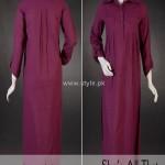 Daaman Fall Casual Dresses 2012 for Women 009