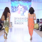 Debenhams Brand Collection 2012 At Fashion Pakistan Week, Season 4 0035