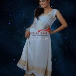 Silkasia Banarsi Collection 2012 for Women 010