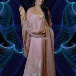 Silkasia Banarsi Collection 2012 for Women 012
