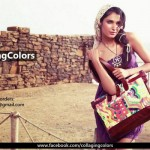 Collaging Colors Handbags Collection 2012 For Women 007