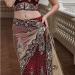 Latest Bridal Saree Trends 2012 For Women 001