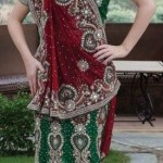 Latest Bridal Saree Trends 2012 For Women 009