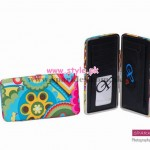 Latest Sparkles Wallet Collection 2012 For Women 001