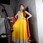 Naj Mehndi Dresses 2012-2013 For Women 006