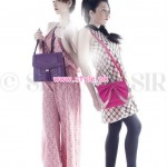 Sidra Nasir Hand Bags And Clutches 2012 For Women 006