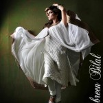 Ambreen Bilal Winter Collection 2012-13 for Women 003