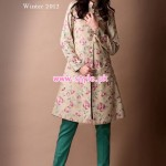 Bareeez Latest Winter Casual Dresses 2012-13 004